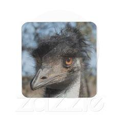 Bad hair day ... The Emu Drink Coaster