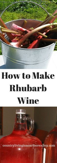 Make your own Rhubarb Wine. Light & tasty, and easy to make at home with your extra Rhubarb harvests.