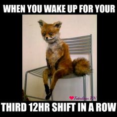 When you wake up for your third 12hr shift in a row. Nurse humor. Nursing funny. Nurses meme. Fox meme.