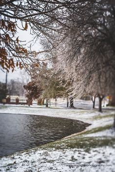 A Winters Walk. The weather forecast last weekend predicted our area to expect about to 2-4 inches of snow instead we received an ice storm and shortly after a light dusting of snow.  I must admit I was disappointed as I was looking forward to photographing the snow falling and the beautiful scene but me being me, I grabbed my boots, my camera and went out anyway.  For the rest of the week, I will be posting the photos I shot.  By the way, I photographed this scene on #lexarmemory using my…