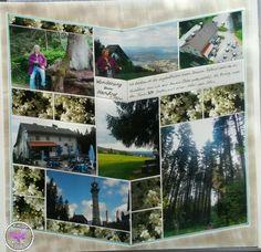 Wanderung zum Hochfirst im Schwarzwald - Titisee. 1.192 m hoch