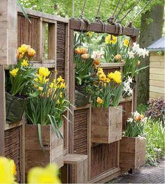 Des idées pour le jardin ...