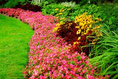 33 Beautiful Flower Beds Adding Bright Centerpieces to Yard Landscaping and Garden Design – Lushome Home Landscaping, Landscaping Company, Missouri, Landscape Arquitecture, Magazine Deco, Flower Bed Designs, Boutique Deco, Landscape Services, Flowers Perennials