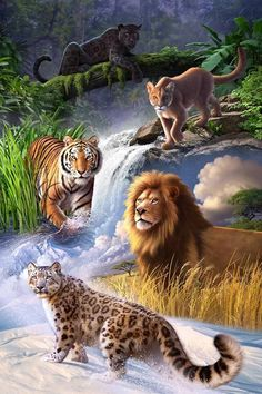 Earth Day Poster Art By Jerry Lofaro Big Cats Wild Cats - Earth Day Poster Art By Jerry Lofaro Jerry Lofaro Big Cats Gallery Wrapped Canvas Is A Commanding Composition Depicting A Meeting Of The Most Powerful Feline Players Of The Ju Big Cats Art, Cat Art, Beautiful Cats, Animals Beautiful, Pretty Cats, Animals And Pets, Cute Animals, Wild Animals, Jungle Animals