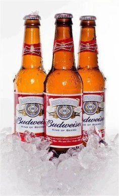 Budweiser for Fat Tuesday!