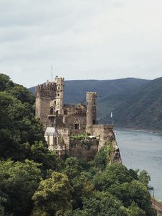 Does an escape from reality sound appealing to you right now? Here's why a Rhine river cruise is the perfect getaway