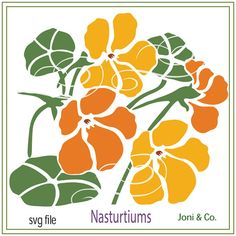 Nasturtiums flower svg. A happy design! If you are cutting this with vinyl, it looks wonderful on coffee mugs. This design also makes great greeting cards.Enjoy! Welcome, Thank you for visiting the shop and having a look at the original artwork offered here. Instant Download... WHAT YOU WILL RECEIVE Your svg file will be in a zip folder for download. A download link will be emailed to you just a few minutes after your purchase. You will also be able to access the file after checkout on y...