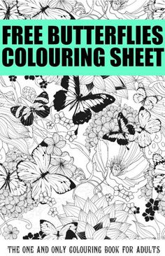 Free colouring pages for adults butterflies