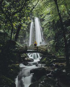 Jumog Waterfall in Photo by Waterfall, Facebook, Travel, Outdoor, Outdoors, Waterfalls, Viajes, Traveling, Outdoor Games
