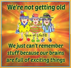 Spice Of Life Quote Unique Spice Of Life  As You Grow Older  Pinterest  Humor Funny