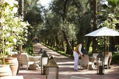 Tea on the Majorelle Terrace, La Momounia Marrakech (now refurbished too I gather)