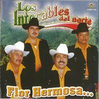 Los Intocables Del Norte-Flor Hermosa : Norteño - Sinaloa-Mp3