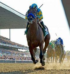 American Pharoah June 6, 2015 makes history winning the Triple Crown