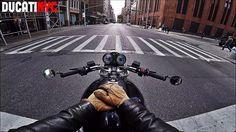 NEW YORK CITY, SLAYED - v284