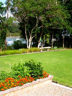 Greenhithe Garden Design Landscape Design, Garden Design, Sidewalk, Plants, Landscape Designs, Flora, Backyard Landscape Design, Plant, Pavement