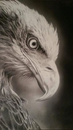 realistic drawings 20 #RealisticDrawings