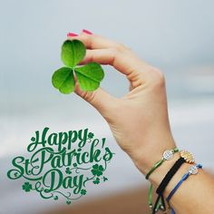 Did you know that the shamrock, a distinct 3 petal clover, helped St. Patrick explain to the people of Ireland the Blessed Trinity - The Father, The Son and The Holy Spirit? Happy St. Patrick's Day!  #stpatricksday #faith #blessed#mysaintmyhero