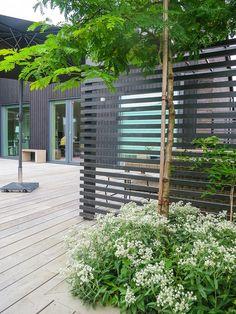 garden design ideas on tight budget Pergola Garden, Garden Trellis, Terrace Garden, Backyard Landscaping, Garden Seating, Pergola Kits, Outdoor Living Rooms, Outdoor Spaces, Modern Garden Design