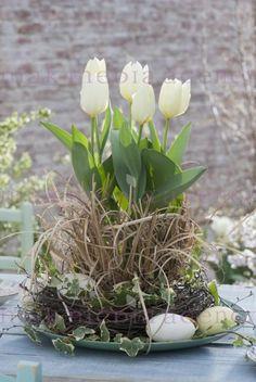 début du printemps - New Ideas Easter Flower Arrangements, Easter Flowers, Floral Arrangements, Spring Plants, Spring Garden, Easter Bunny Pictures, Valentine Bouquet, Garden Edging, Flower Farm