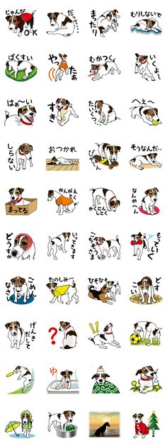 Sticker of jack russell terrier. Super cute and playful dog.