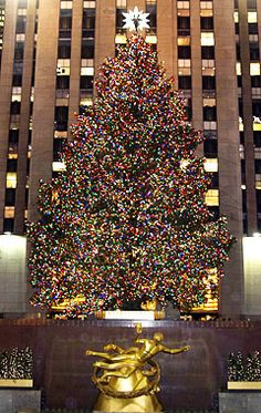 Christmas in New York Rockefeller Center! My dream is to be in New York for Christmas! Christmas In The City, Merry Little Christmas, Noel Christmas, Winter Christmas, All Things Christmas, Christmas Lights, Christmas Decorations, Sleeps To Christmas, New York Christmas Tree