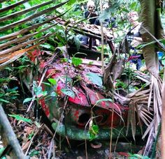 1961 Corvair abandoned in the Central America jungle in 1961