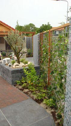 Jardins modernos por Gardeco
