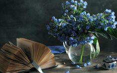 Photographie - Nature Morte - Fleur - Livre Fond d'écran