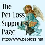 10 ways to cope with the loss of a pet