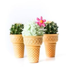 Did you catch my cactus ice cream cones yesterday over on the @studiodiy blog? Best part is the flavor! Go check them out, link in profile.