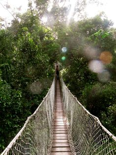 Amazon Jungle, Peru, South America #intheclouds #knowmadtraveljournal #knowmaddadventures