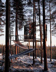 tree hotel by tham & videgård arkitekter - Buscar con Google