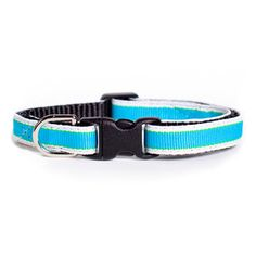 For just 2 more hours, Big Blue Boo and many of our other collars are featured on Fab! #cat #fab #catcollars