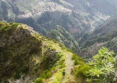 Encumeada trail running tour Route: Encumeada – Curral Jangão – Relvinhas – Curral das Freiras – Boca das Torrinhas – Encumeada  Elevation gain 2820 m   Distance 22 km   Altitude min. 604 m   Altitude max. 1638 m  #running #madeira #sports