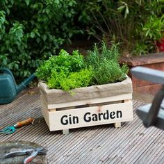 Grow Your Own Gin Garden With Large Planter by Plant and Grow, the perfect gift for Explore more unique gifts in our curated marketplace. Cocktails For Beginners, Gin Festival, Gin Tasting, Gin Gifts, Gin Bar, Gin Lovers, Gin Bottles, Bottle Garden, Large Planters