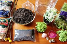 Terrarium how to. I love these little things! I have dreams of having a Christmas tree with terrarium ornaments only someday.