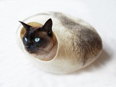 Cat Bed Cat Cave Cat House Felted Wool   Love this! and the cat looks just like Ziggy :)