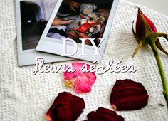 DIY - Fleurs séchées
