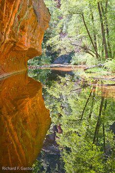 Oak Creek Canyon, Sedona, Arizona; photo by Richard Gaston