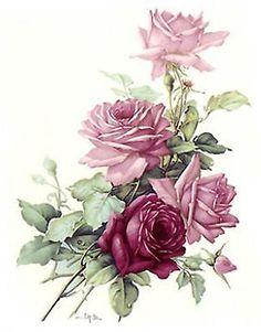 San fazer Rosa Rose Buquê Flor select-a-size Cerâmica decalques Waterslide Bx