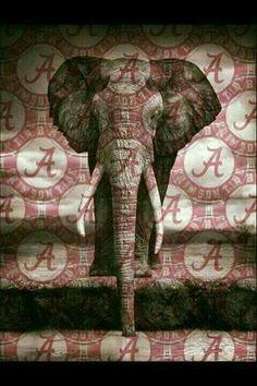 Love my Alabama Crimson Tide ❤❤ Alabama Crimson Tide Logo, Crimson Tide Football, Alabama Tide, Alabama Baby, Alabama College Football, University Of Alabama, Alabama Wallpaper, Bama Fever, Nick Saban
