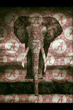 Love my Alabama Crimson Tide