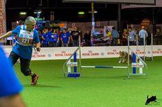 https://flic.kr/p/CGDKdy | Dmitri Kargin mit Stenley | AWC 2015 - Team Jumping Small