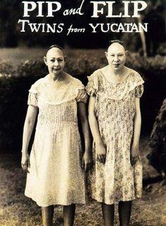 Irmã de Yucatan - Circo dos Horrores