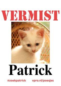 http://www.vpro.nl/.imaging/stk/vpronl/image-58/dam/vpronl/subsites/jeugd/programmas/poesjes/zoek-patrick/jcr:content/zoek%20patrick.jpg