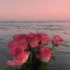 Find images and videos about pink, flowers and beach on We Heart It - the app to get lost in what you love.