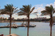 Alexandria, Egypt. (A. Carman)