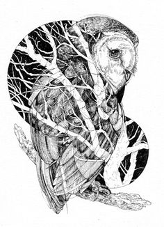 Barn Owl & Branches. Pen with India ink on watercolor paper, 2014.