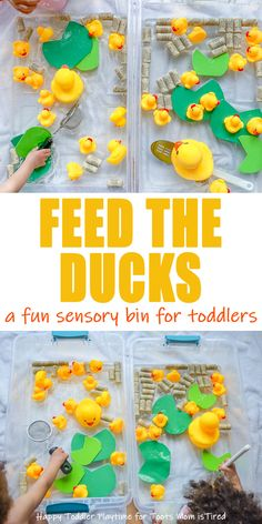 Feed the Ducks Sensory Bin for Toddlers & Preschoolers - Toot's Mom is Tired - - Create a fun duck pond sensory bin for your toddler or preschooler! Add spoons and pretend food to turn it into an enticing fine motor pretend play activity. Toddler Sensory Bins, Baby Sensory Play, Sensory Activities Toddlers, Sensory Boxes, Toddler Play, Toddler Learning, Infant Activities, Toddler Preschool, Activities For Kids