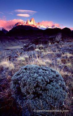 Monte Fitz Roy beyond the pampas, Parque Nacional los Glaciares, Patagonia, Argentina. Stock Photo Patagonia, Irish Landscape, Romantic Escapes, Atlantic Ocean, Landscape Photographers, Bolivia, South America, Chile, Traveling